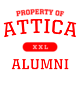 Attica Ladies Long Sleeve Tri-Blend Wicking Raglan Tee