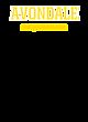Avondale Fan Favorite Heavyweight Hooded Unisex Sweatshirt