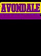 Avondale Champion Heritage Jersey Tee