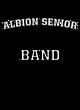 Albion Senior Fan Favorite Heavyweight Hooded Unisex Sweatshirt