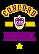 Concord Fan Favorite Heavyweight Hooded Unisex Sweatshirt