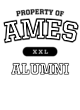 Ames Fan Favorite Heavyweight Hooded Unisex Sweatshirt