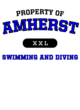 Amherst Fan Favorite Heavyweight Hooded Unisex Sweatshirt