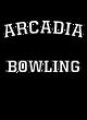 Arcadia Allmade Ladies' Tri-Blend V-Neck Tee