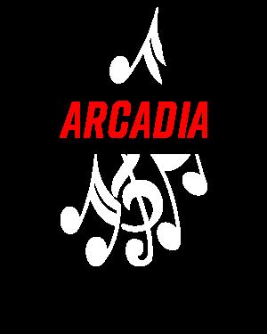 Arcadia The North Face Embroidered High Loft Fleece