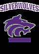 Riverton Womens Holloway Electrify V-Neck Long Sleeve