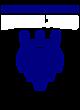 Fertile-beltrami Comfort Colors Heavyweight Ring Spun LS Tee