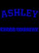 Ashley Allmade Ladies' Long-Sleeve Tri-Blend Tee