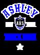Ashley New Era Ladies Heritage Blend Varsity Hoodie