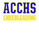 Aquin Central Catholic  Sch Classic Fit Heavy Weight T-shirt
