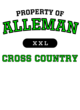 Alleman Ladies Game Long Sleeve V-Neck Tee