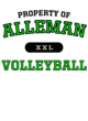Alleman Womens Ultimate Performance V-Neck T-shirt