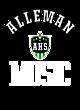 Alleman Womens Holloway Heather Electrify V-Neck Shirt
