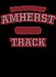 Amherst Nike Legend Tee