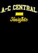 A-c Central New Era Ladies Tri-Blend Hooded Sweatshirt