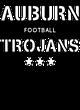 Auburn Classic Fit Heavy Weight T-shirt
