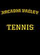 Arcadia Valley Fan Favorite Ladies Cotton V-Neck T-shirt