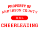 Anderson County Allmade Unisex Tri-Blend Tee
