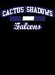 Cactus Shadows Tri-Blend Wicking Long Sleeve Hoodie