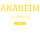 Anaheim Youth Competitor Hooded Pullover