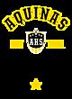 Aquinas Fan Favorite Heavyweight Hooded Unisex Sweatshirt