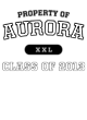 Aurora Classic Fit Heavy Weight T-shirt