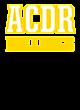 Ascension Catholic Diocesan Reg Fan Favorite Heavyweight Hooded Unisex Sweatshirt