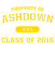 Ashdown Ladies Tri-Blend Performance T-Shirt