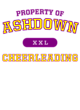 Ashdown Allmade Ladies' Tri-Blend V-Neck Tee