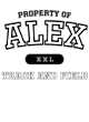 Alex Ladies Long Sleeve Fanatic T-Shirt