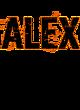 Alex Ladies Long Sleeve Tri-Blend Wicking Raglan Tee
