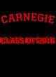 Carnegie Fan Favorite Heavyweight Hooded Unisex Sweatshirt