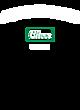 Amphitheater Fan Favorite Heavyweight Hooded Unisex Sweatshirt