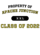 Apache Junction Classic Fit Heavy Weight T-shirt