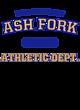 Ash Fork Ladies Ombre V-Neck Tee
