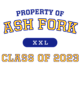Ash Fork Next Level Womens Festival Muscle Tank