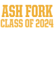 Ash Fork Ladies Long Sleeve Tri-Blend Wicking Raglan Tee