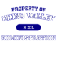 Chino Valley Womens Holloway Electrify Long Sleeve Performance