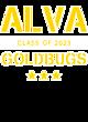 Alva Fan Favorite Heavyweight Hooded Unisex Sweatshirt