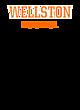 Wellston New Era Tri-Blend Pullover Hooded T-Shirt