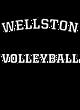 Wellston Fan Favorite Heavyweight Hooded Unisex Sweatshirt