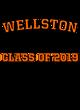 Wellston New Era French Terry Hooded Sweatshirt