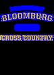 Bloomburg Attain Long Sleeve Performance Shirt