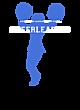 Amon Carter-Riverside Allmade Ladies' Tri-Blend Crew Neck Tee