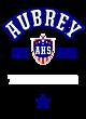 Aubrey Fan Favorite Heavyweight Hooded Unisex Sweatshirt