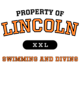 Lincoln Fan Favorite Heavyweight Hooded Unisex Sweatshirt