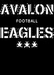 Avalon Nike Legend Tee