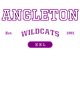 Angleton Youth Electric Heather Hooded Sweatshirt