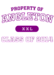 Angleton Champion Reverse Weave Hooded Sweatshirt