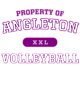 Angleton District Perfect Tri Long Sleeve Hoodie